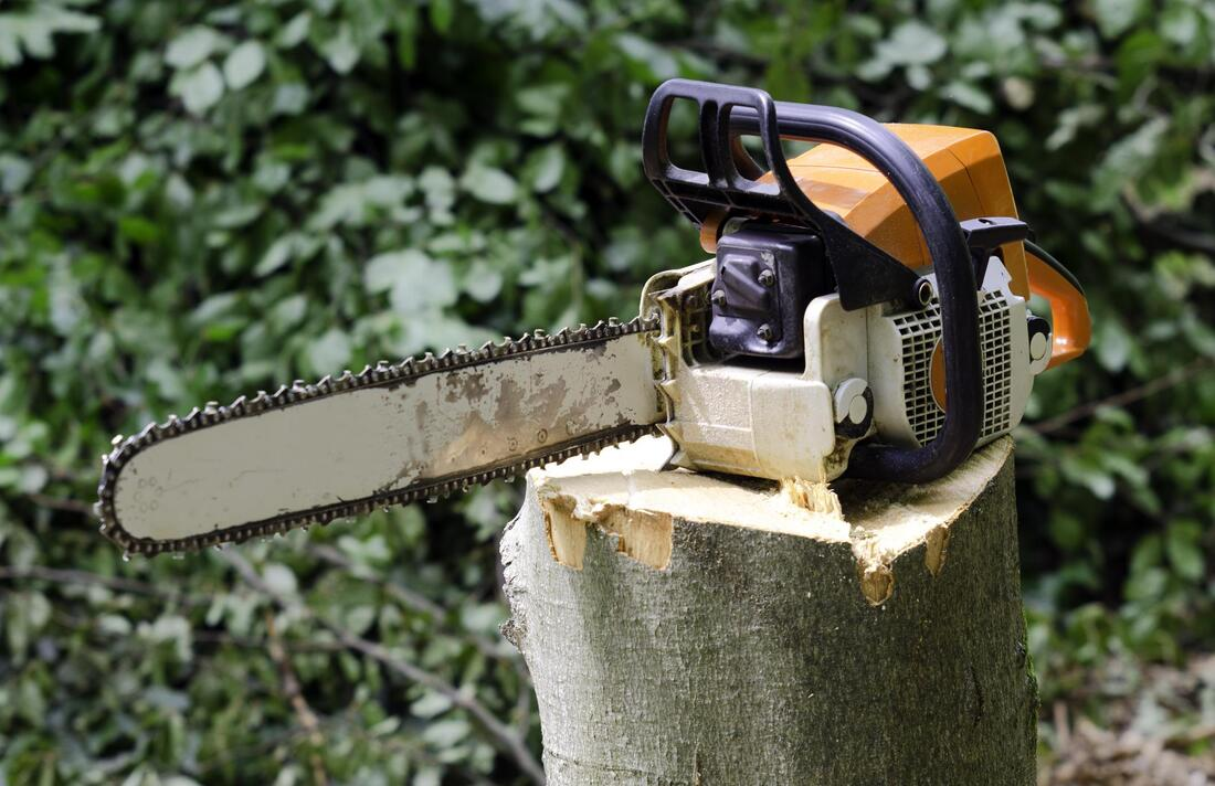 Picture of a chainsaw used for stump removal and stump grinding