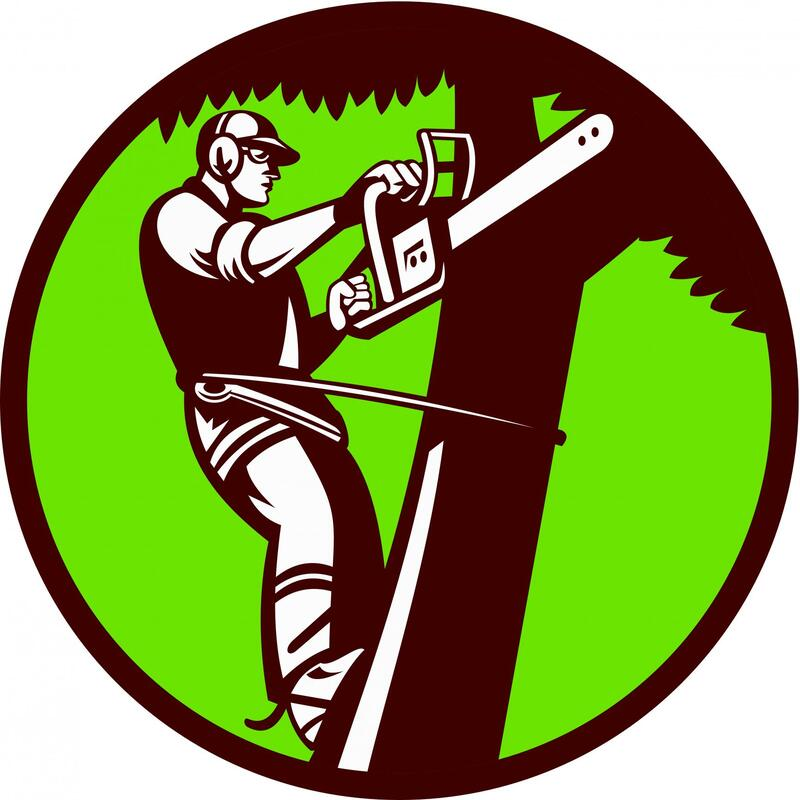 This is a picture of the logo of Folsom Tree Service